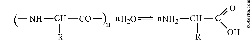 9. Напишите уравнение реакции